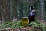 Хвойное пиво