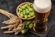 Какую роль играет хмель в пивоварении?